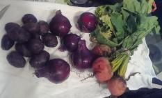 farmer's market 8-14